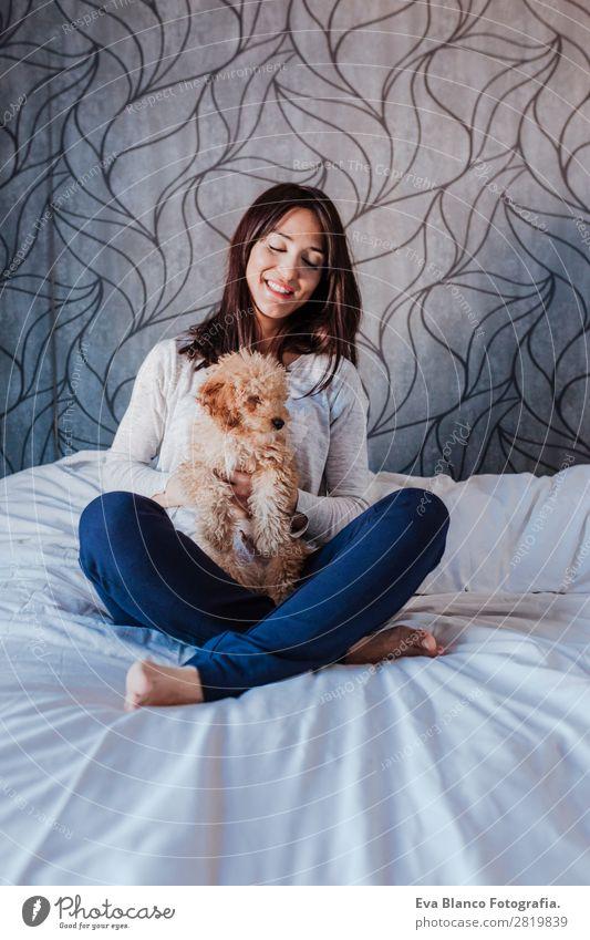 Frau Mensch Hund Jugendliche Junge Frau schön Hand Haus Tier Freude Lifestyle Erwachsene Liebe Glück klein Freiheit