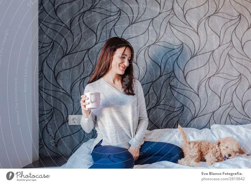 Süßer Zwergpudel mit seinem jungen Besitzer zu Hause. Kaffee Lifestyle Freude Glück schön Freizeit & Hobby Freiheit Mensch feminin Junge Frau Jugendliche