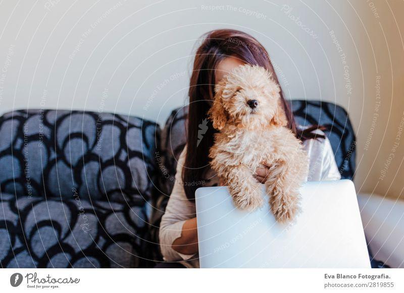 Süßer Zwergpudel mit seinem jungen Besitzer zu Hause. Lifestyle Freude Glück schön Sofa Handy PDA Computer Notebook Technik & Technologie Mensch feminin