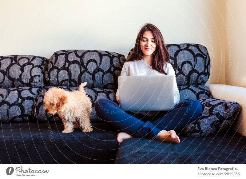 junge Frau mit ihrem Zwergpudelhund zu Hause Lifestyle Freude Glück schön Sofa Handy PDA Computer Notebook Bildschirm Technik & Technologie Mensch feminin