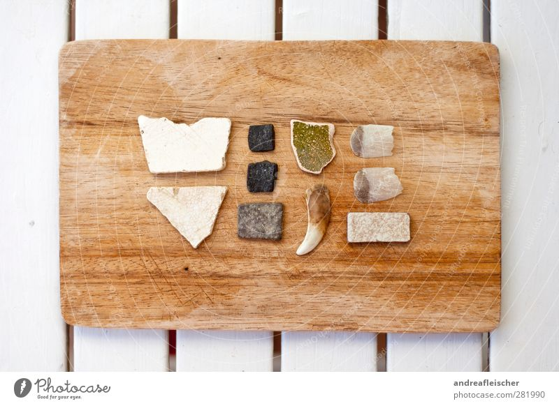 sammlung in ordnung. Natur grün weiß schwarz Umwelt Holz Stein braun Ordnung ästhetisch Tisch Spitze Gebiss Fliesen u. Kacheln Holzbrett durchsichtig