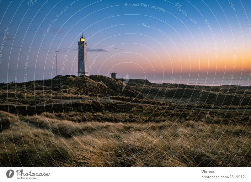 Blavands HukBlavands II Natur Landschaft Küste Strand Nordsee Meer atmen Erholung Dänemark Blavands Fyr Fyrkat Dünengras Stranddüne Turm Leuchtturm Abend