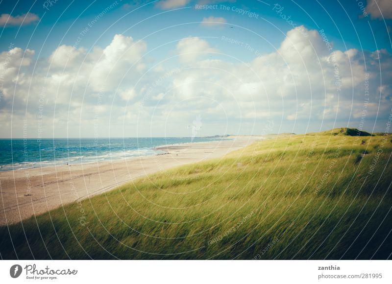 ocean/gras Natur Landschaft Himmel Wolken Sommer Schönes Wetter Küste Strand Nordsee Einsamkeit Erholung Ferien & Urlaub & Reisen Horizont Idylle Pause ruhig