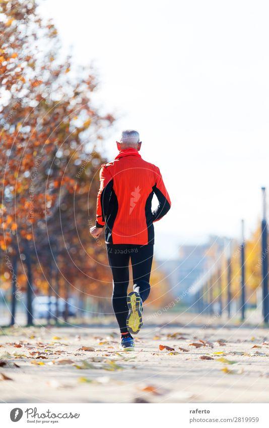 Rückansicht eines älteren Mannes in Sportbekleidung, der im Park joggt. Lifestyle Joggen Mensch maskulin Erwachsene Männlicher Senior 1 60 und älter Natur