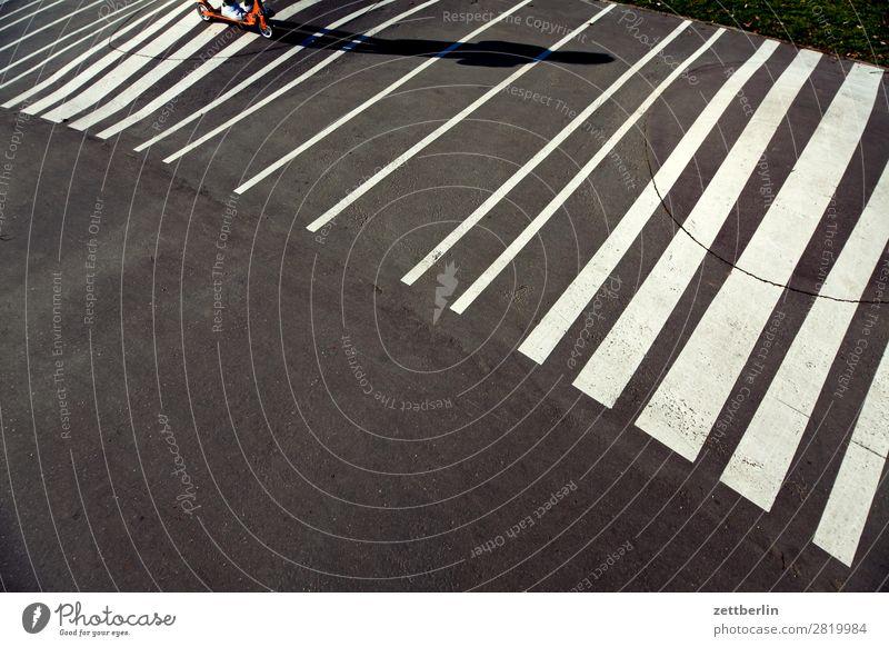 Rollern auf Streifen Asphalt fahren Frühling Licht Kind Spielplatz Schilder & Markierungen rollen Tretroller Schatten Sommer Spielen Linie Textfreiraum Bewegung