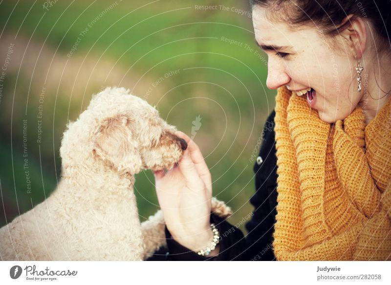 'Gut gemacht!' Hund Mensch Natur Jugendliche grün Junge Frau Freude Tier gelb Umwelt feminin Herbst Glück Mode Freundschaft Freizeit & Hobby
