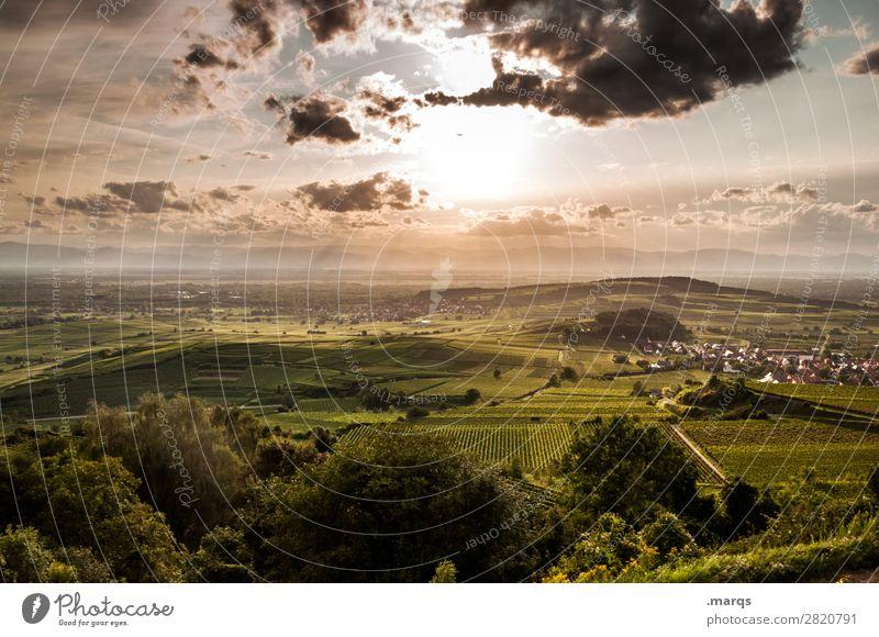 Kaiserstuhl Landschaft Himmel Wolken Sommer Schönes Wetter Pflanze Nutzpflanze Hügel Wein Weinbau Erholung Stimmung Natur Farbfoto Außenaufnahme Menschenleer