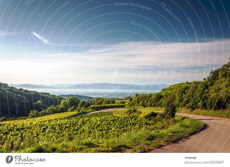 Kaiserstuhl Natur Landschaft Himmel Sommer Schönes Wetter Aussicht Wege & Pfade Erholung Landwirtschaft Farbfoto Außenaufnahme Menschenleer Textfreiraum oben