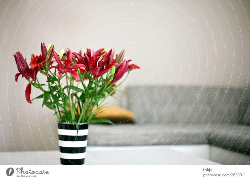 Wohnzimmer [aufgeräumt] Lifestyle Stil Häusliches Leben Wohnung einrichten Innenarchitektur Dekoration & Verzierung Sofa Raum Blume Blumenstrauß Lilien