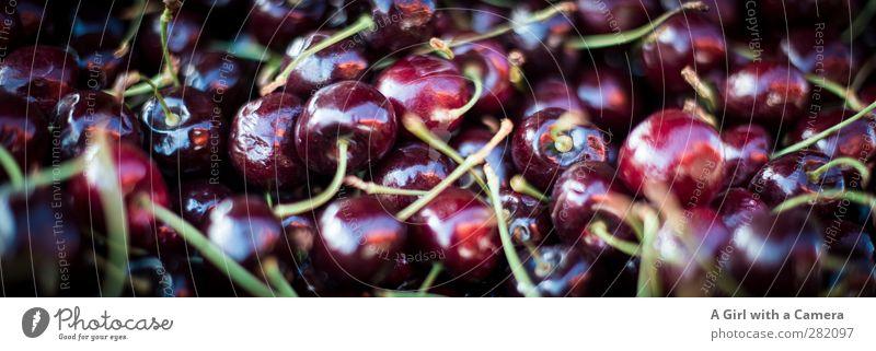 Cherries Lebensmittel Frucht Kirsche Ernährung Bioprodukte Vegetarische Ernährung Diät frisch Gesundheit rund klein saftig Markt Angebot schön Farbfoto
