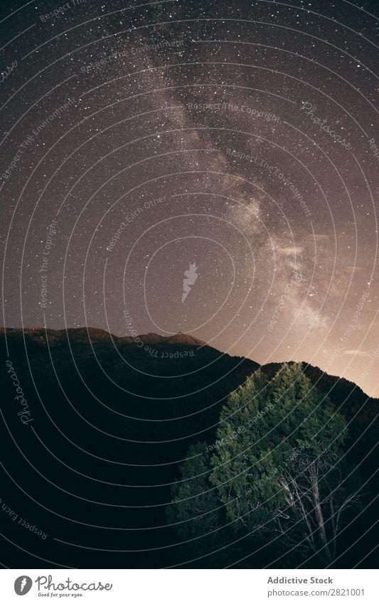 Landschaft bei Nacht Stern Holz Himmel Weltall Licht Galaxie dunkel Silhouette Schmuckkörbchen Astronomie Natur sternenklar Phantasie milchig Weg Lifestyle
