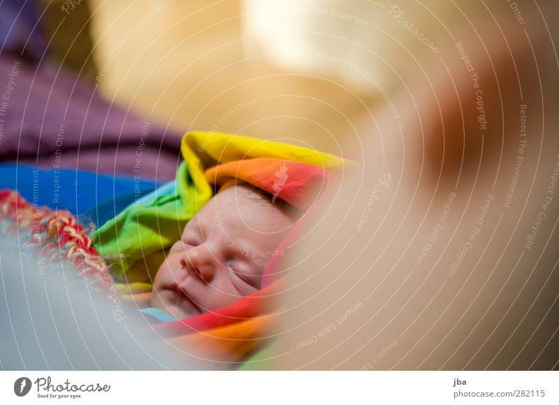 behütet Mensch Kind Jugendliche ruhig Erholung Erwachsene feminin Glück Familie & Verwandtschaft träumen 18-30 Jahre Kindheit Baby Haut Zufriedenheit schlafen