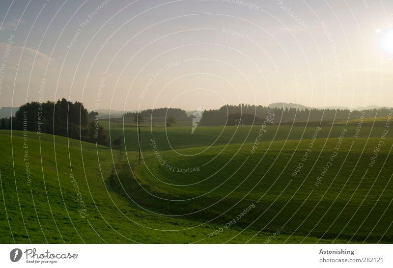 grün Umwelt Natur Landschaft Pflanze Erde Luft Himmel Wolken Horizont Sonne Sonnenaufgang Sonnenuntergang Sonnenlicht Herbst Wetter Schönes Wetter Baum Gras