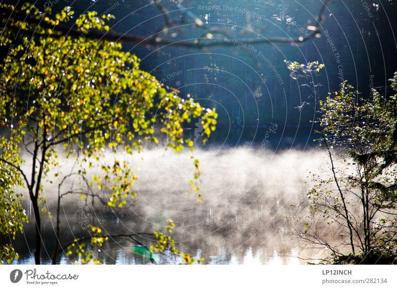 Schwedische Krone(n) harmonisch Wohlgefühl Zufriedenheit Erholung ruhig Angeln Ferien & Urlaub & Reisen Tourismus Ausflug Freiheit Sommer Sommerurlaub Umwelt