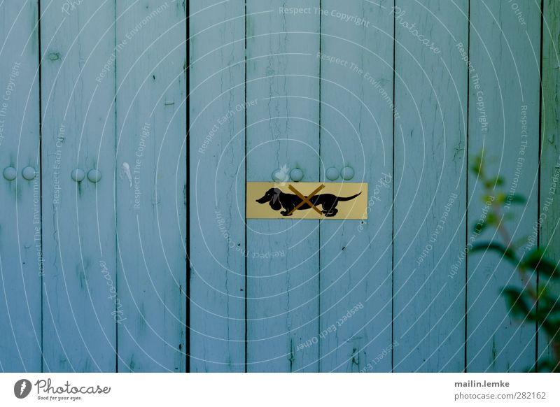 Dackel blau gelb Holz Metall Schilder & Markierungen Verbote