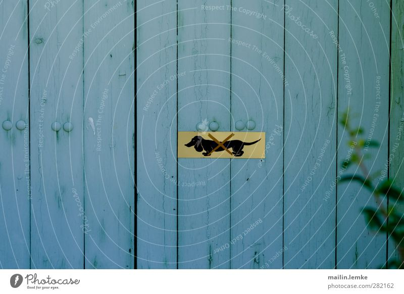 Dackel Schilder & Markierungen Holz Metall blau gelb Verbote Farbfoto Außenaufnahme Menschenleer Zentralperspektive