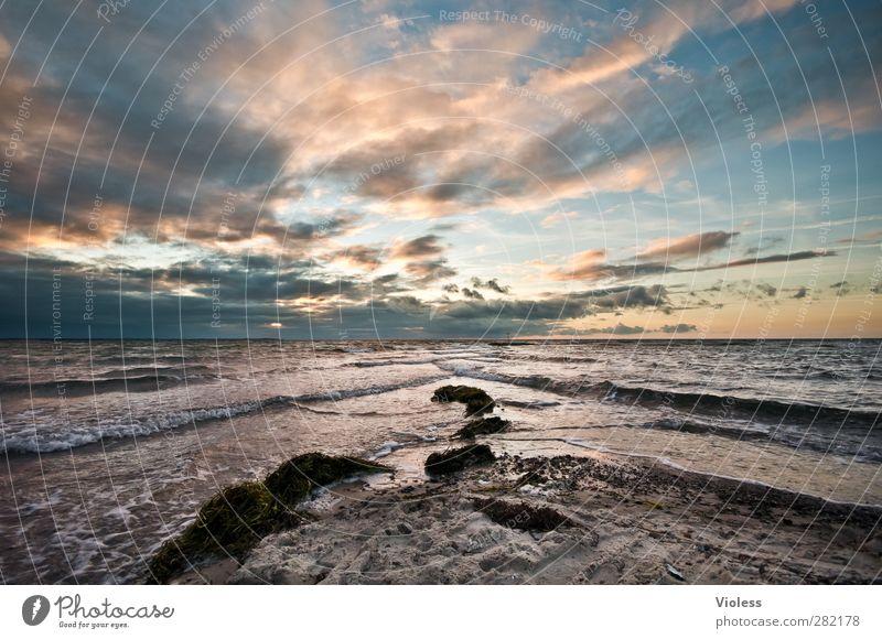 ... far away Himmel Natur Sommer Strand Wolken Landschaft Erholung Küste Wellen Insel Schönes Wetter genießen Ostsee Insel Poel