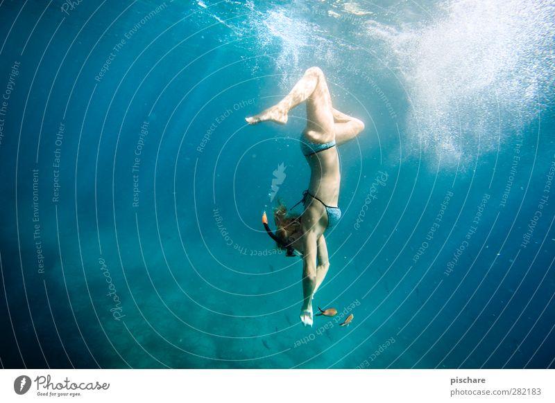 kleine Meerjungfrau exotisch schön Freizeit & Hobby Ferien & Urlaub & Reisen Tourismus Abenteuer Sommerurlaub Sport tauchen Wasser blau Lebensfreude Farbfoto