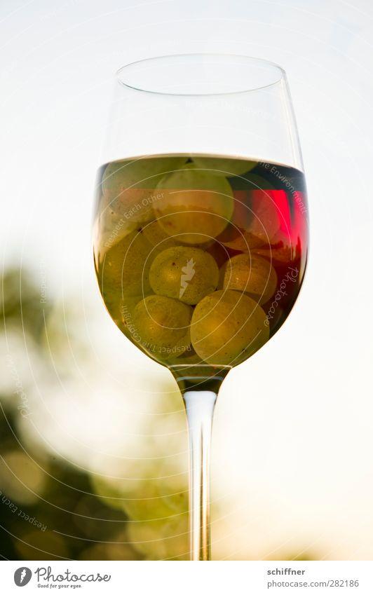Rot oder weiß? weiß rot Frucht Glas Lebensmittel Ernährung Getränk Wein Wein genießen Lebensfreude Doppelbelichtung Alkohol Weinberg Weintrauben Weinglas