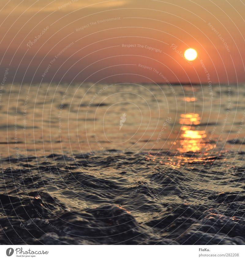 Nordsee am Abend Himmel Natur blau Wasser Ferien & Urlaub & Reisen Sommer rot Sonne Meer Umwelt Ferne Gefühle Freiheit Horizont Stimmung orange