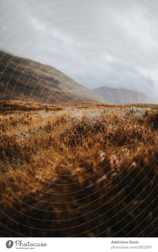 Trockene Wiese auf einem Hügel Berge u. Gebirge regenarm Gras Landschaft Natur Feld ländlich Ferien & Urlaub & Reisen Wolken Tal Aussicht schön Landen Szene