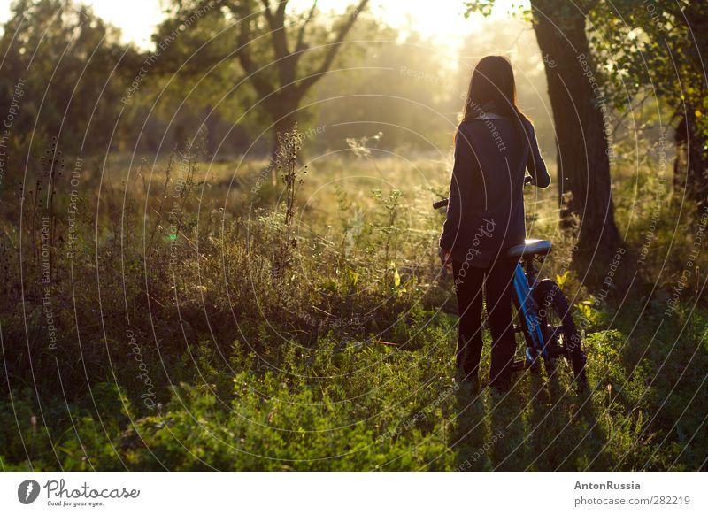 allein Fahrradfahren Mensch feminin Junge Frau Jugendliche Erwachsene 1 18-30 Jahre Umwelt Natur Landschaft Pflanze Herbst Schönes Wetter Baum Garten Park Wald