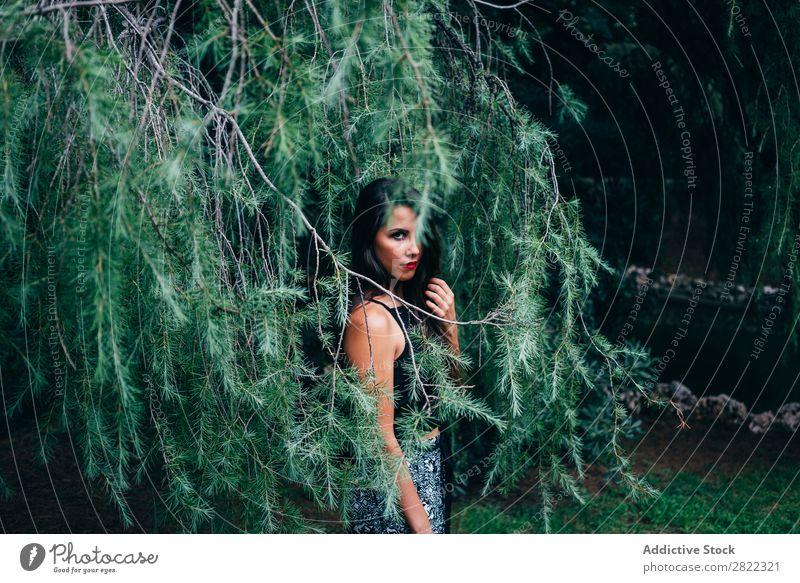 Hübsche Frau in Tannenästen hübsch Jugendliche schön stehen Baum Branche grün Park Wald Blick in die Kamera brünett attraktiv Mensch Beautyfotografie Erwachsene