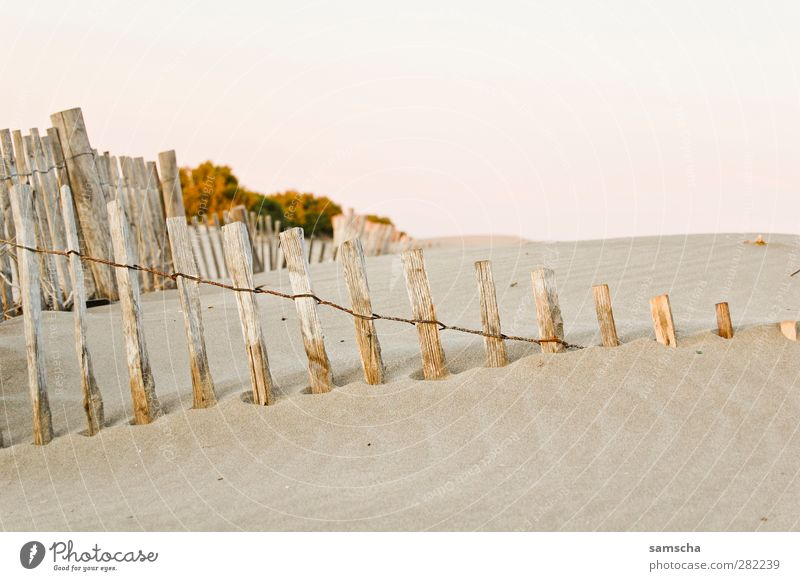 sandy Natur Sand Küste Strand Wüste Diät Idylle Sandstrand Sandbank Sandverwehung Stranddüne Haag Zaun Holzbrett Holzpfahl Holzzaun Lattenzaun verweht Meer