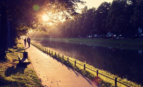 Nymphenburg Mensch gelb Wärme Herbst sprechen Wege & Pfade Paar Park Zusammensein gehen gold leuchten Schönes Wetter Spaziergang retro Romantik