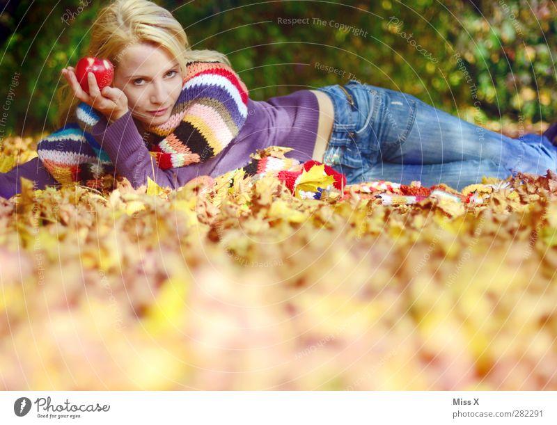 Herbst II Apfel Mensch feminin Junge Frau Jugendliche Erwachsene 1 18-30 Jahre Blatt Wiese Wald Jeanshose Schal blond liegen schön mehrfarbig herbstlich