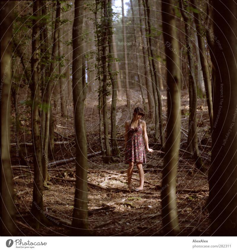... und dann weiß man nicht, links oder rechts, vor oder zurück Natur Jugendliche grün schön Baum ruhig Wald Erholung Erwachsene Umwelt Junge Frau Erotik Holz