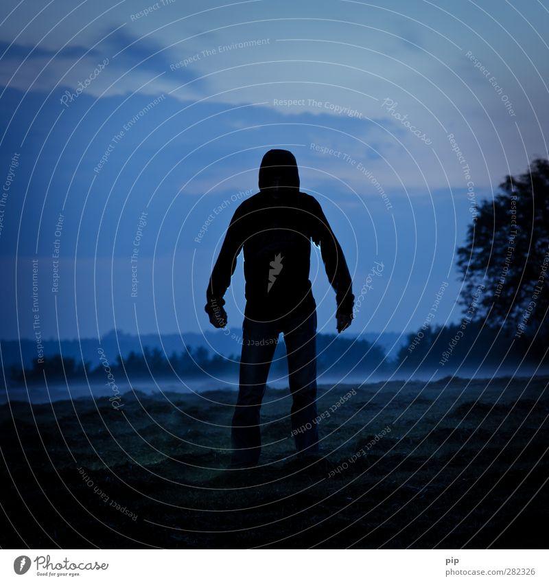 zwielichtige gestalt Mensch maskulin Mann Erwachsene Körper Arme 1 Natur Wolken Horizont Herbst Klima Nebel Baum Feld Wald frieren gehen bedrohlich dunkel