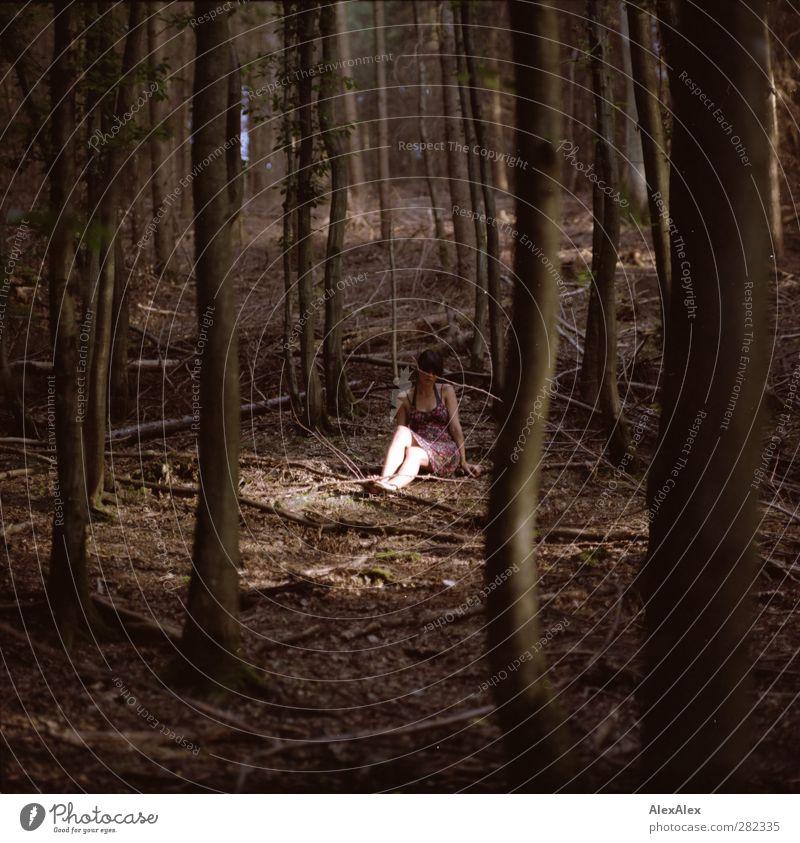 auf der Lichtung Natur Jugendliche grün schön Sommer Baum Einsamkeit ruhig Erholung Wald Erwachsene Umwelt Junge Frau Erotik Holz Beine