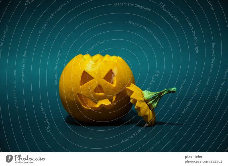 Happy Halloween Gesicht dunkel Lebensmittel Angst orange Dekoration & Verzierung Ernährung bedrohlich Gemüse gruselig Aggression Kürbis Erntedankfest