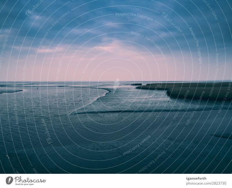 Blick vom Kiekkasten Ferien & Urlaub & Reisen Ausflug Abenteuer Ferne Freiheit Meer Winter Natur Landschaft Pflanze Urelemente Erde Sand Wasser Wolken Wetter