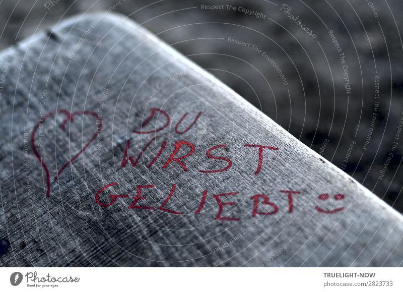 Gedankenspiele | Botschaft in Rot, draußen auf Holzbank rot Einsamkeit Wärme Religion & Glaube Liebe natürlich Gefühle Glück grau Schriftzeichen Herz