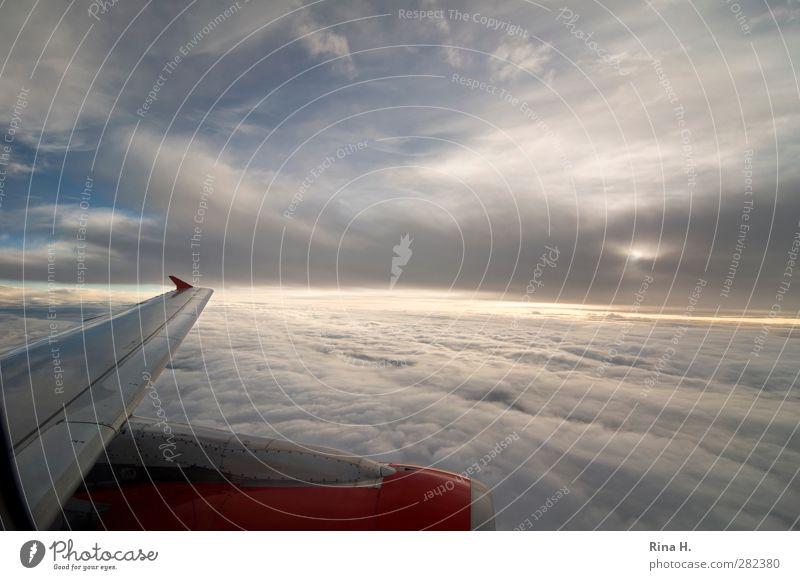 Nichts wie weg Ferien & Urlaub & Reisen Himmel Wolken Horizont Wetter Schönes Wetter Verkehrsmittel Luftverkehr Flugzeug fliegen Unendlichkeit Freude