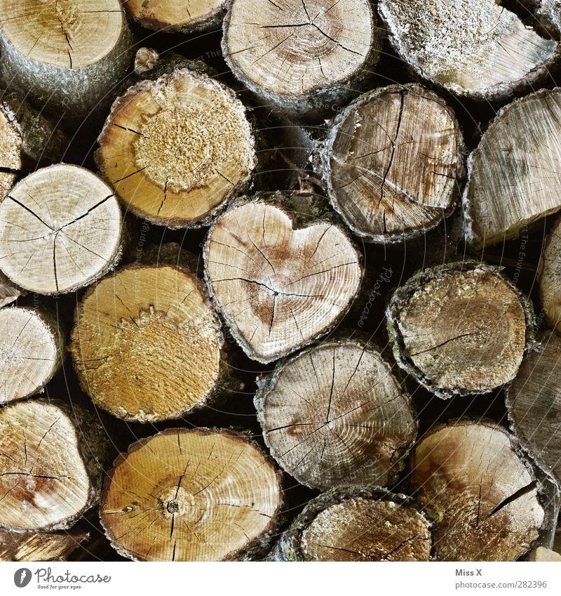 Auch ein Herz gefunden Holz braun Gefühle Liebe Verliebtheit Baumstamm Holzstruktur Brennholz Jahresringe herzförmig Baumrinde baumschlag fällen Farbfoto