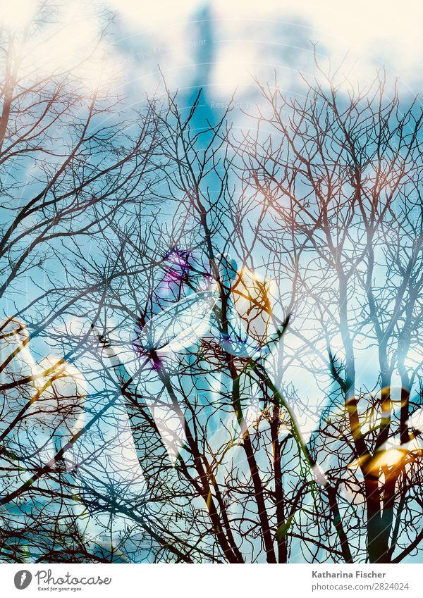 Baum Äste Blumen Doppelbelichtung Kunst Kunstwerk Gemälde Natur Frühling Herbst Winter Pflanze Blatt Blüte Blühend blau gelb gold grün violett orange rosa