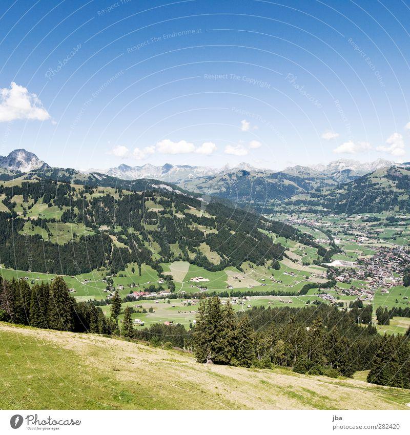 Gstaad Natur Sommer Wolken Landschaft Wald Ferne Berge u. Gebirge Herbst Feld wandern Tourismus Ausflug ästhetisch Schönes Wetter Alpen Gipfel
