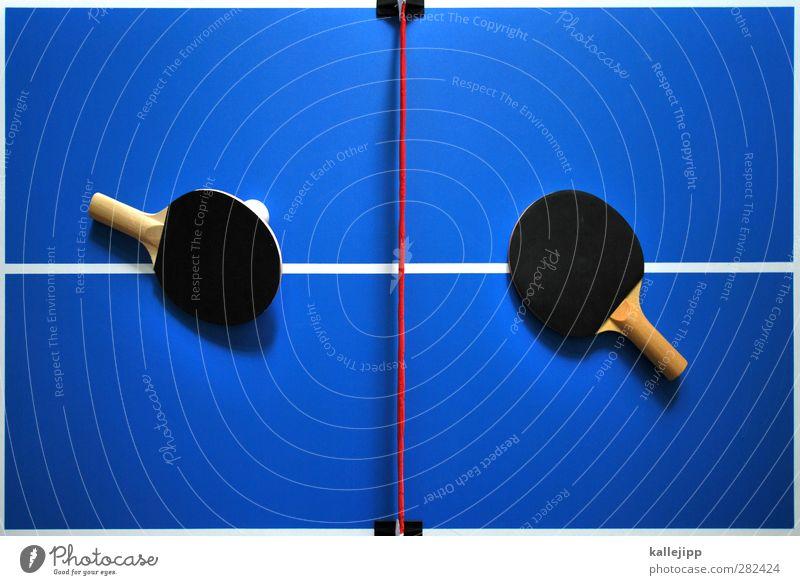 ping vs. pong blau Sport Spielen Linie Freizeit & Hobby Erfolg Lifestyle planen Fitness Netz Spielfeld Grenze Sport-Training Sportveranstaltung Konkurrenz