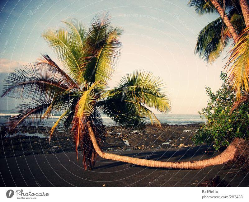 Sitzgelegenheit | Costa Rica, Parque Nacional Corcovado Himmel Natur blau Wasser grün Pflanze Baum Meer Strand Wolken Landschaft Umwelt Küste Sand Luft liegen