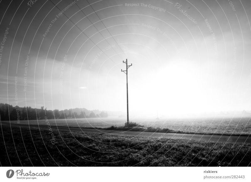 disappear in the nothingness Natur Sonne Landschaft Umwelt Wiese Herbst Gefühle hell Stimmung Feld Nebel Strommast Hochspannungsleitung