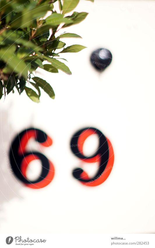 verkehrserziehung Sträucher Blatt Zeichen Ziffern & Zahlen Sex rot schwarz weiß 69 Sexualität Esoterik Paragraph § 69 StGB Sexpraktiken 96 Farbfoto