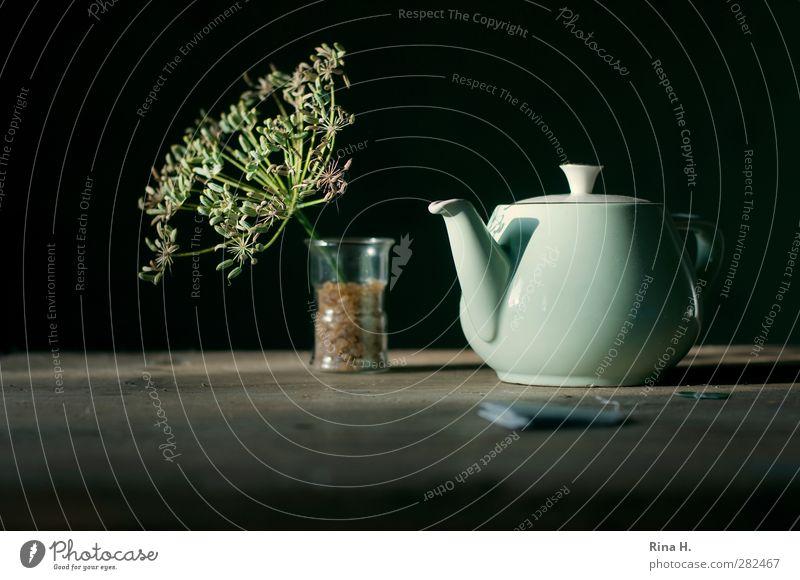 KräuterTee Heißgetränk Glas Teekanne Gesundheit Kräutertee Teebeutel Samen Fenchel Holztisch Alternativmedizin Kandiszucker Farbfoto Gedeckte Farben