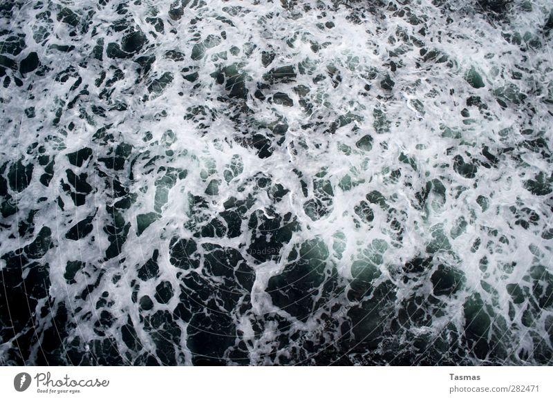 Undiscovered Souls Umwelt Natur Wasser Wetter Wind Sturm Meer alt wild Wut blau schwarz weiß Traurigkeit Trauer Tod Schmerz Sehnsucht Frustration Beginn