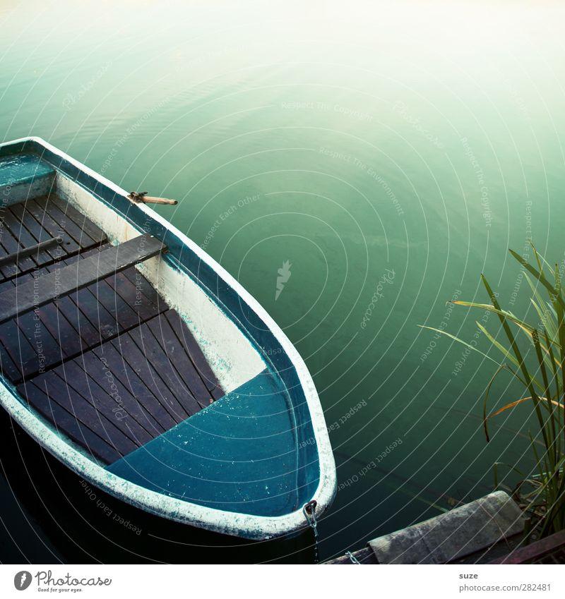 Brötchen ohne R Sommer Umwelt Natur Pflanze Urelemente Wasser Wetter Schönes Wetter Küste Seeufer Fischerboot Ruderboot Wasserfahrzeug liegen grün Einsamkeit