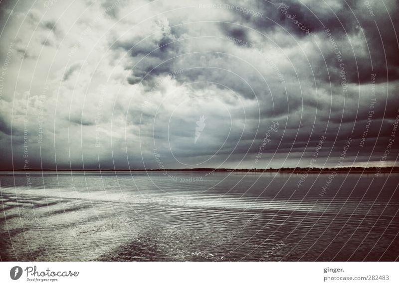 Hiddensee   Wir kamen, zu scheuchen die Wolken! Frühling schlechtes Wetter Wind Ostsee dunkel kalt blau-grau Wasseroberfläche Meer auf See Grundbesitz