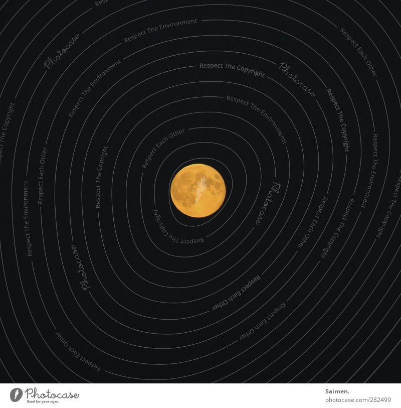 dunkel wars... Natur Himmel Nachthimmel Mond Vollmond leuchten gelb Weltall Farbfoto Außenaufnahme Lichterscheinung