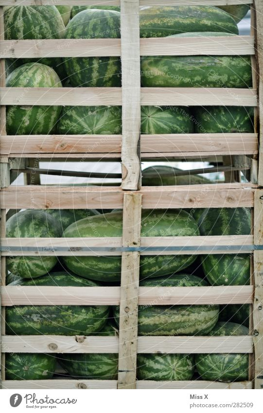 Im Kasten grün Gesundheit Frucht Lebensmittel groß frisch Ernährung süß viele rund lecker Ernte Bioprodukte Kiste verkaufen saftig